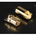 6mm oro conector Polymax